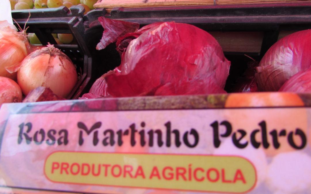 11 Rosa Martinho