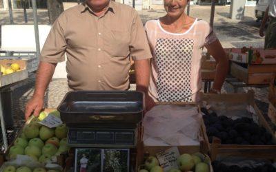 Firmino Costa Augusto e Laura Gomes