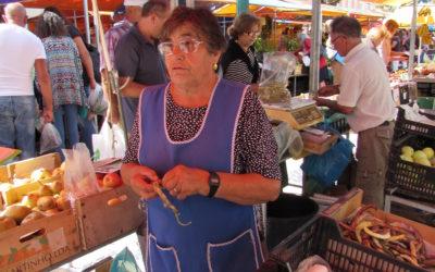 Maria Rosário Carpinteiro
